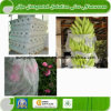 100% PP Nonwoven Fabrics for Agriculture