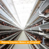 Poultry Steel Structure Chicken Farm Building H Type Battery Cage