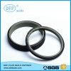 Standard or Nonstandard PTFE Piston Seals with Professional Design