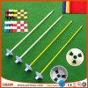 Good Quality Colorful Free Design Printing Mini Golf Flags