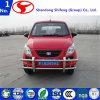 D303/Electric Car/Vehicle/EV-Car/Scooter/Small/Car/Electric Carsuper Lightweight Mini
