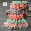 Viscose Shawl Colorful Stripe Printed Fashion Lady Scarf Factory