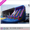 Giant Commercial Kids Inflatable Water Slide with Low Price
