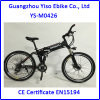 Mountain Electric Assist Bicycle Folding E Bicycle for Man