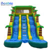 Douable Lanes Water Slides Inflatable Swimming Pool Slide