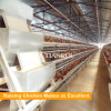 Hot Galvanized A Type Chicken Farm Poultry Equipment Layer Cages