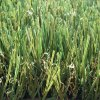 Chinese-Made Artificial Grass with 30mm Height Yarn