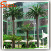 Ome Wholesale Hotel Decoration Plastic Artificial Date Palm Tree