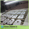 Special Shape Low Iron Tempered Glass Panel for Home Appliance/Furniture