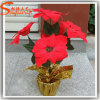 Chinese Wholesale Fake Artificial Poinsettia Bonsai Flowers Arrangements