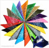 High Quality Double Sided Digital Print Paisley Bandana/Scarf