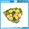 Neohesperdin Dihydrochalcone 98%/Nhdc / 95% with Factory Price CAS No.: 13241-33-3