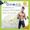 Anabolic Steroids 4-Chlorodehydromethyltestosterone Oral Turinabol CAS 2446-23-3