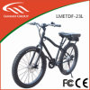 Alu Alloy, Brushless, Rear Motor, 36V250W Electric Bike