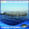 HDPE Fish Cage Fish Farming Cage for Deep Sea Aquaculture