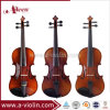 Advanced Musical Instruments Student Acoustic Violin (VG107)