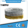Full Round-Head Ring Shank Hot-Dipped Galvanized Wire Coil Siding Nails