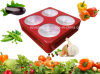 Shenzhen LED Grow Light Price 300W COB Grow Light LED Plant Grow Light