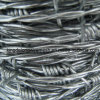 Stainless Steel 304 Barbed Wire