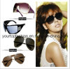 Ladies Sunglasses, Designer Womens Sunglasses, Brand Name Sunglasses