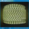 SMD5050 Flexibele LED Strip Light for Decoration 100m