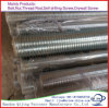 Electrical Zinc Tensile Strength Galvanized Threaded Rod, Stainless Steel Threaded Rod, Trapezoidal Threaded Rod