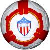 2015 Hot PVC Football (SG-0113)