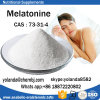 Top Quality Nutritional Supplements Melatonine CAS 73-31-4 for Health