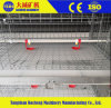 China Factory Quality H Type Layer Poultry Cages