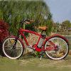 2016 Hot Sales Italia Ebike Italian Ecycle for Riding