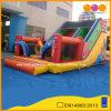 Indian Colorful Inflatable Slide with Good Qualtiy Novel Design (AQ09176)