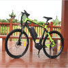 Latest 700cc Mountain Ebike with High Quality
