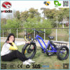 48V 500W Fat Tire Electric Enclosed Motor Tricycle