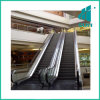 Star Safety and Stable Indoor Escalator