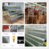 Cost Efficient Chicken Cage Breeding Equipment and Prefab Poutry House