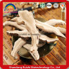 Basswood/Wild Ganoderma Lucidum/ Reishi /Lingzhi Mushroom Slice