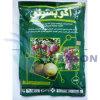 King Quenson Bactericide Fungicide Thiophanate-Methyl 95% Tc (70% WP, 500 g/L SC)