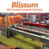 Fresh Juice Bottling Plant Machinery Line