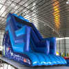 Top Sale Ocean Theme Party Inflatable Inflatable Slide