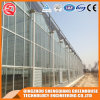 China Agriculture Multi-Span Tempered Glass Greenhouse