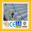 Galvanized Steel Pipe/Tube