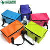 Promotional Polyester Insulated Cans Cooler Carry Bag for Frozen Food
