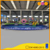 PVC Tarpaulin Mushroon and Strawberry Garden Inflatable Water Pool (AQ3285)