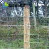 Heavy Duty Staylock Fence 11/85/15 100m Roll/ 2.50m Wire