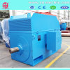 Yrkk Series Medium Size Three Phase Asynchronous Motor