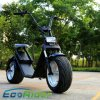 Ecorider Two Wheels Citycoco Scooter Harley Electric Scooter