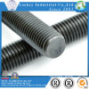 Alloy Steel / Steel Thread Rod Stud Bolt