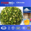 High Quality Dried Processed Dehydrated Chives Powder Flake Granules Manufacturer