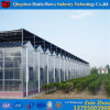 Pop up with Roll up Motor Glass/Plastic Film/PC Sheet Greenhouse with Hydroponic System for Angriculture Aquaponics Cucumber