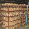Golden Supplier for Fresh Fat Ginger High Quality
